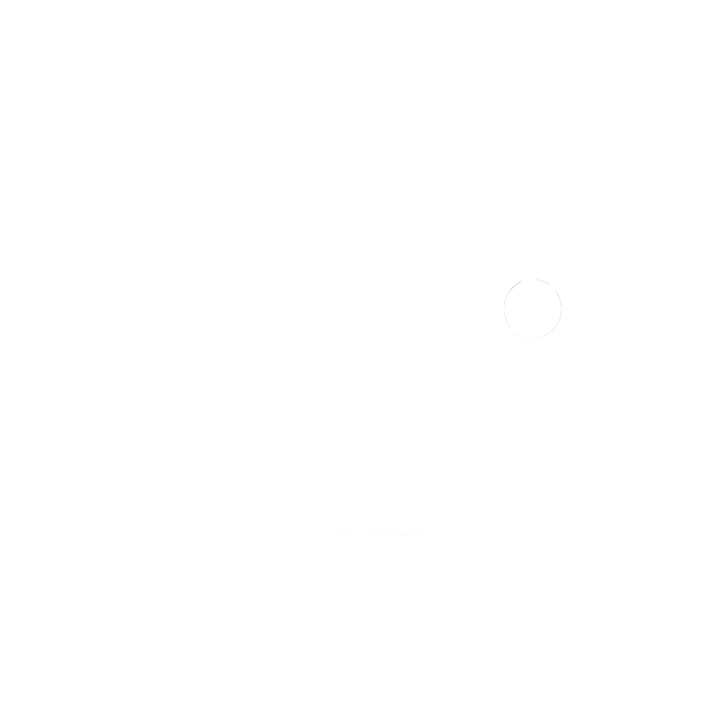 StageSoc logo